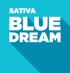 Sativa – Blue Dream